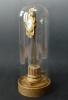 Een Franse zaagklok onder glazen stolp op vergulde voet, Louis Seize , Elzas circa 1780.