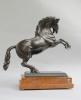 Bronze horse