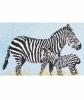Hermes Zebra Print Towel 65x95