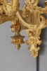 A very decorative pair of French gilt wall lamps/scounces, circa 1835