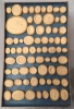 Set of Grand Tour plaster intaglio casts mounted in nine trays