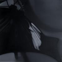 Butterfly 1 - - Liu Xiaofeng