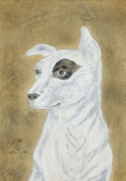 White dog, dark circle around one eye.