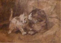 Cat with kitten. Holland, mothercat with kitten.