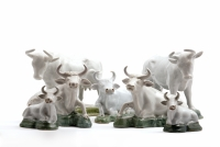 A group of Cows in White Dutch Delftware