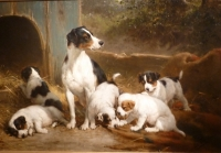 The Alert Mother, Female dog with five puppies