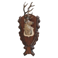 A nice head of a stag in Vienna bronze, circa 1900