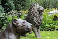 Staande Leeuw en Liggende Leeuwin