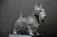 Scottish Highland Terrier