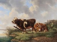 Resting cattle  - Albertus Verhoesen