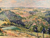 Hilly Landscape in Summertime