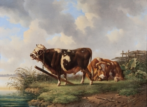 Resting cattle  - Albertus Verhoesen - Albertus Verhoesen