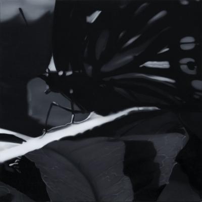Butterfly 3 - - Liu Xiaofeng
