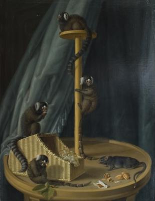 Johann Dietrich Findorff - Monkeys