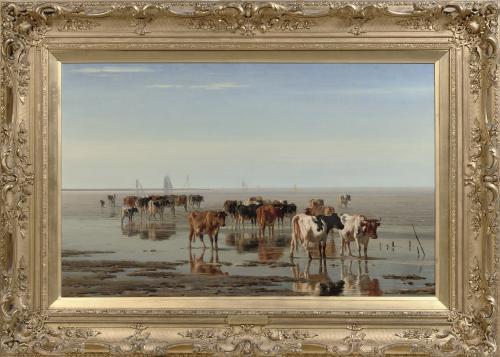 Vieh auf dem Strand bei Ebbe